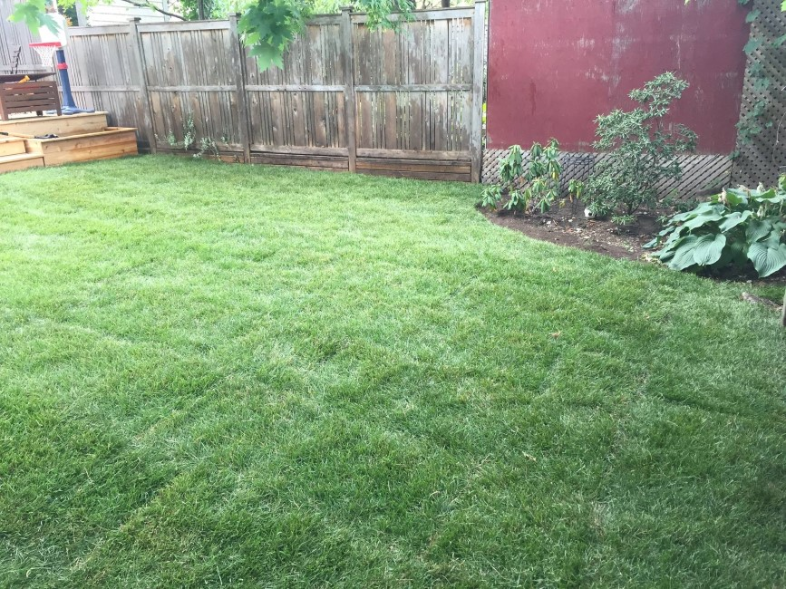 Landscaping contractor nepean on ottawa on for General garden services