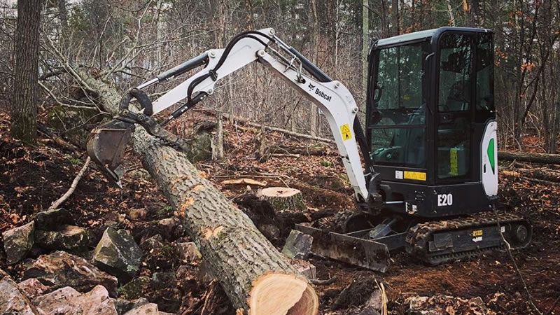 Lot and Land Clearing Services In Ottawa and Nepean